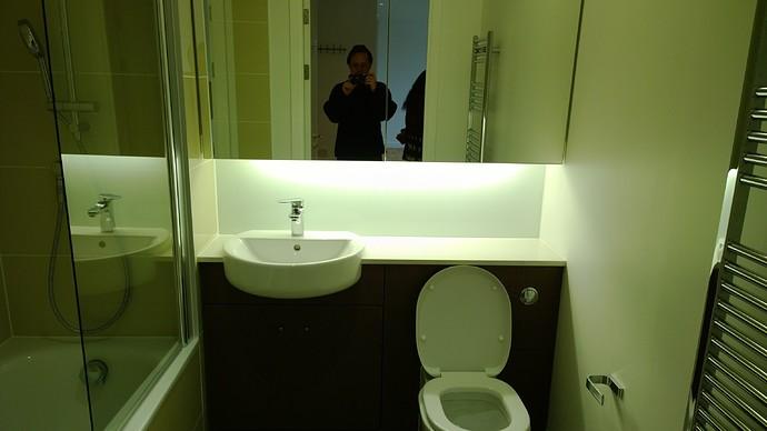 use-bathroom2