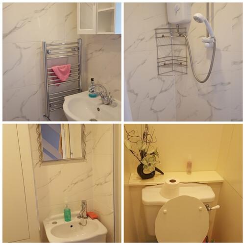shower_toilet