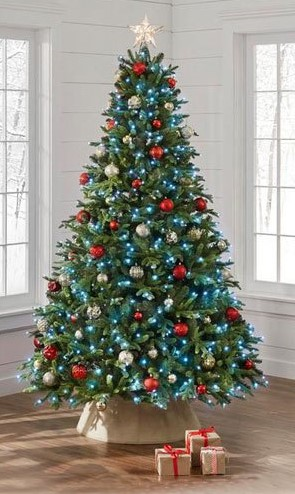 featured-christmas-trees